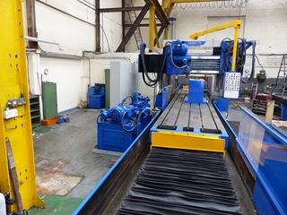 Schleifmaschine Favretto FR 125  900  600-10